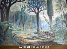 Human activities and Global Warming - Carboniferous Forest