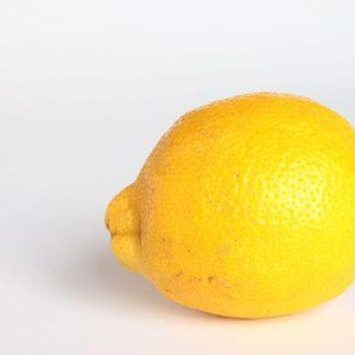 one organic lemon on white background