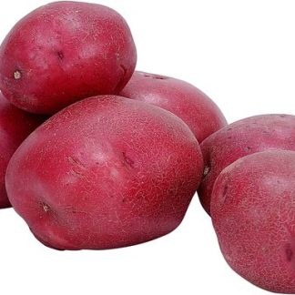several organic red potatoes on white background