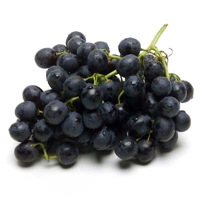 bunch of black organic grapes