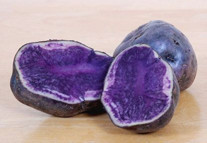 two purple organic potatoes one cut