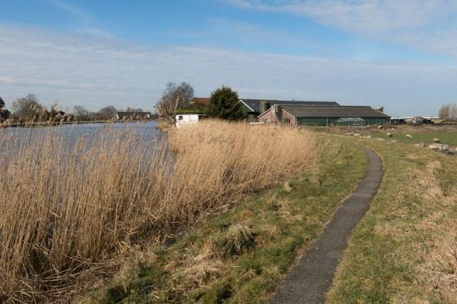 Het Zuid-Hollandse landschap in het vroege voorjaar