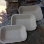 tray-pulp
