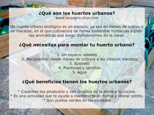 huerto ecologico ciudad