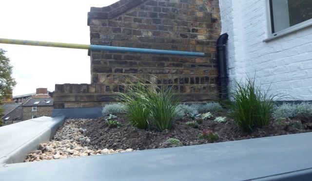 Stoke Newington roof
