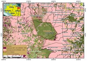 Degradação total no Mosaico de áreas Protegidas no período de 2007-2013 (37995 hectares): TI Alto Rio Guamá/PA (14416 ha); TI Ka'apor/MA (5773 ha); TI Awá/MA (714 ha); TI Caru/MA (690 ha) e Rebio Gurupi/MA (16442 ha) (© Greenpeace)