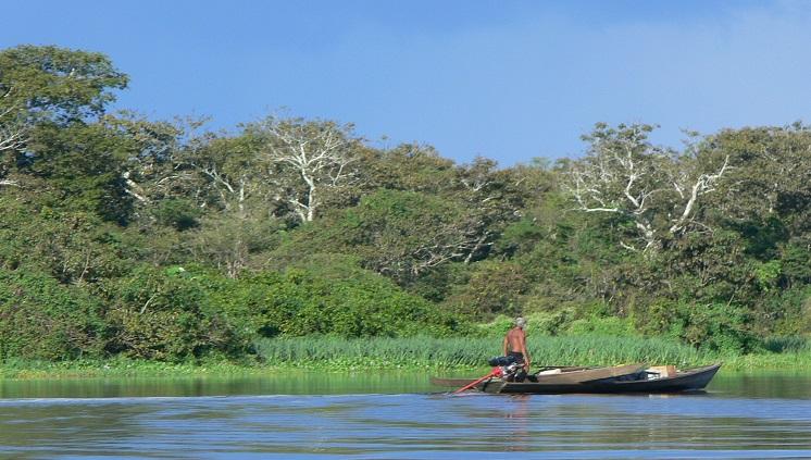 Livro sobre as Várzeas Amazônicas comemora 50 anos de convênio do Inpa com Instituto Max-Planck em estudos de Áreas Alagáveis