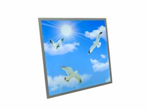 Sky panel