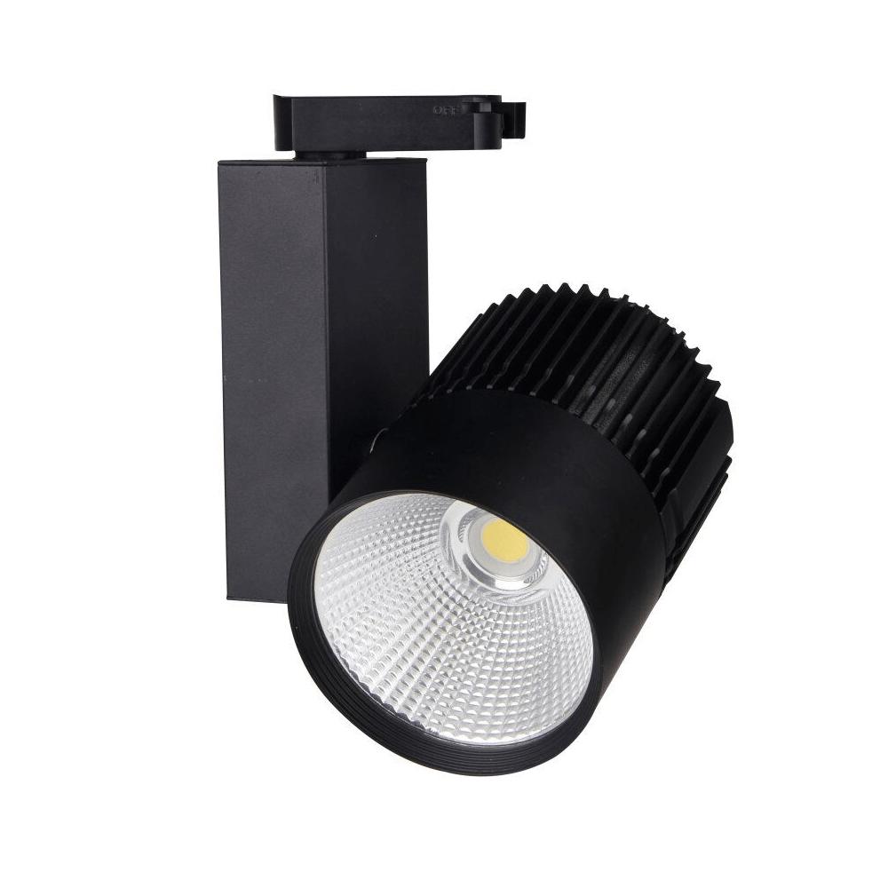 Black Track Light