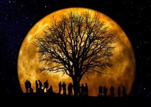 lune-selenite