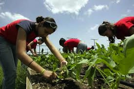 schoolgirls farming