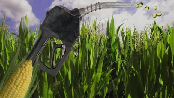 etanol de milho