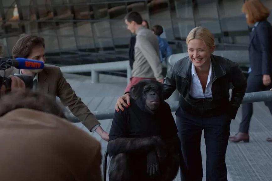 Tutti gli uomini di Victoria scimpanzè