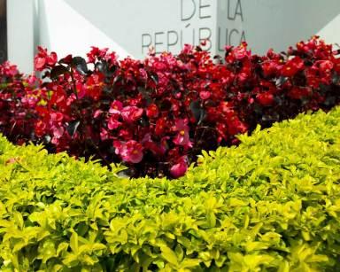 Banco de la República mantenimiento jardines ecoflora