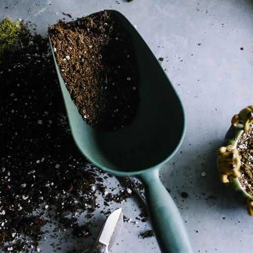 Comercialización de material vegetal insumos y materas