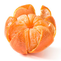 Food in Season - Satsuma Oranges