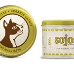 Eco Friendly Christmas Gifts for Pets - catnip
