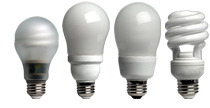 CFL Light Bulbs different looks