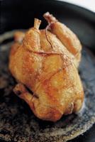 organic chicken taste