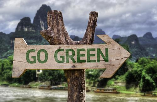 Top 5 Ways to Save the Environment