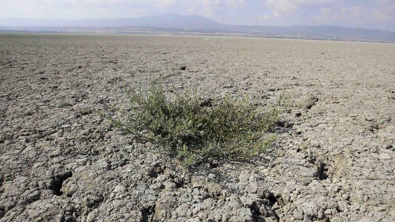 Με «ερημοποίηση» κινδυνεύει το ένα τρίτο των εδαφών της Ελλάδας
