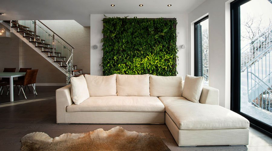 Do living walls clean air  Ecohome