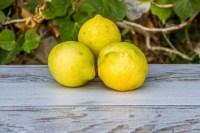 Limones ecológicos de El Madroñal