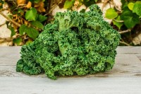 Kale Ecológico de El Madroñal