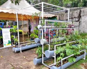 Green Innovation - Vertical Farming
