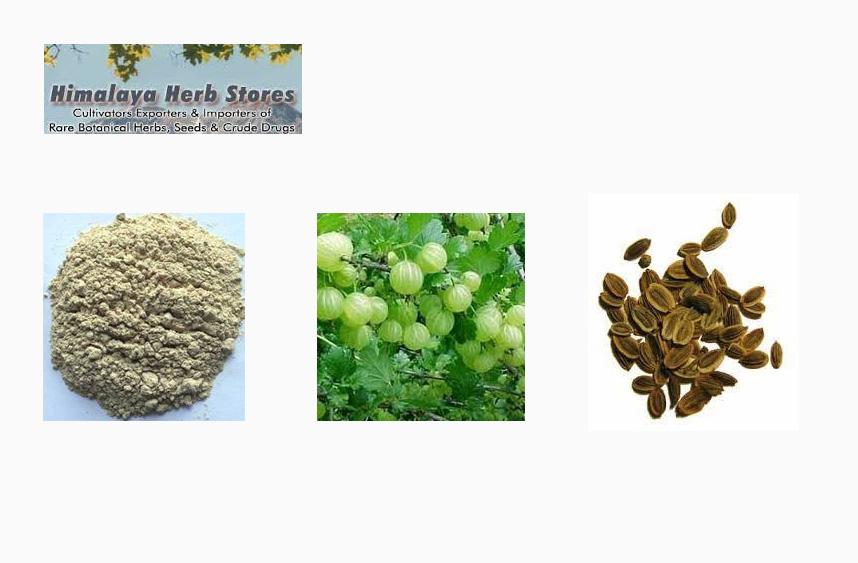 Himalaya-Herb-Stores