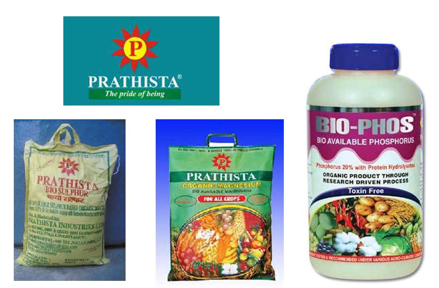 Prathista Industries Ltd
