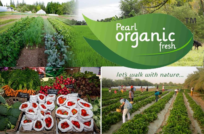 Pearl Organic