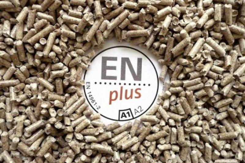 Primeros certificados ENplus para empresas