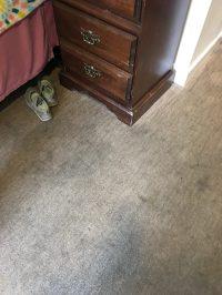 Senior Living Facility Carpet Care- Eco Interior Maintenance