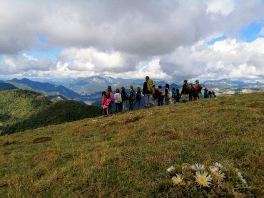 Caminando au sommet du Mont Chauvet à la Comtesse automne 2020