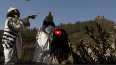 Vidéo diagnostic croisé kogis dans la Drôme