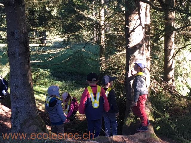 IMG_8757 [Ecolesrec.ch]