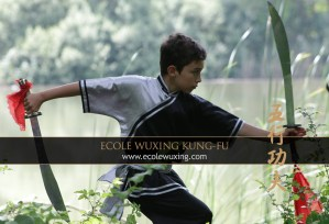 Ecole Wuxing Nils Double Sabre