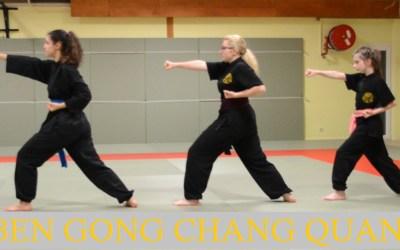 Baby Kung Fu – Enchaînement codifié #1