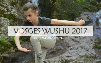 Dépassement de soi et Kung-Fu Wushu – Stage 2017