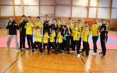 Coupe Grand Est Wushu – Résultats Photos Vidéo