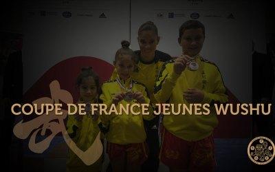 3 médaillés à la Coupe de France Jeunes Wushu