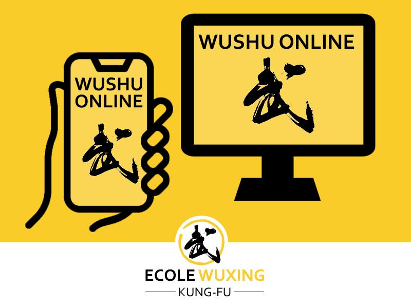annonce cours en ligne wushu online