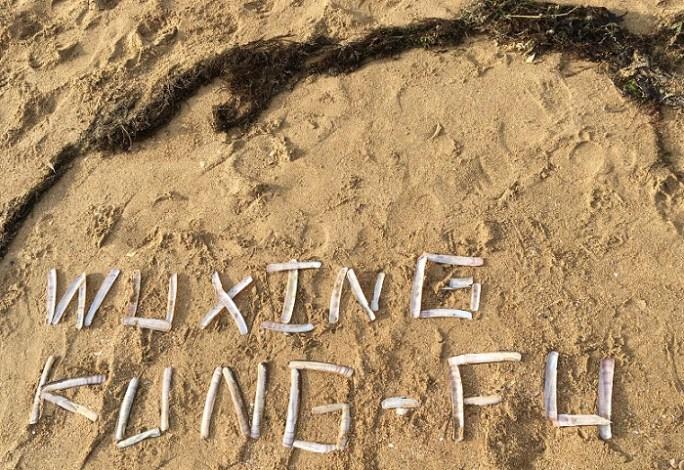 Reprise des cours septembre 2019 wuxing Kung-Fu