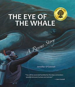 eye-of-the-whale cover