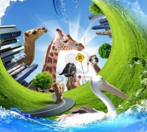 proteccion-de-la-naturaleza-la-ecologia-y-los-animales-concepto-de-collage