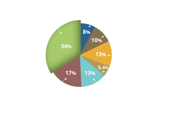 Carbon Footprint Pie-Chart