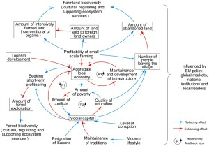 Fig 5 Causal loop diagram summarizing the dynamics of