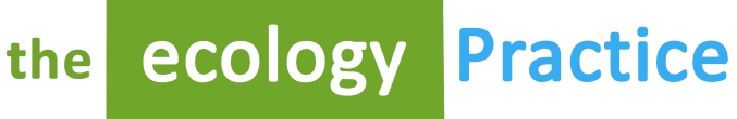 The Ecology Practice