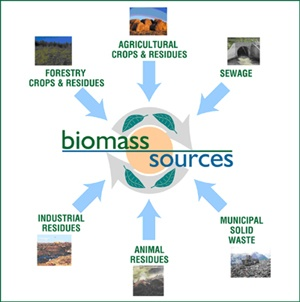 biomass_resources_middle_east